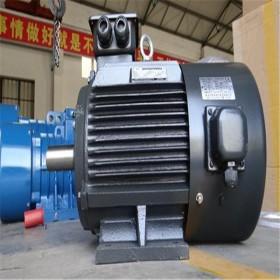 PQ制砖机专用电动机   河南新乡特种电机