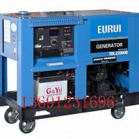日本东洋柴油发电机TDL22000E