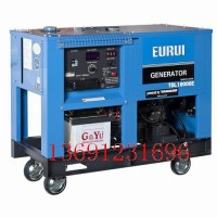 东洋柴油发电机TDL16000E