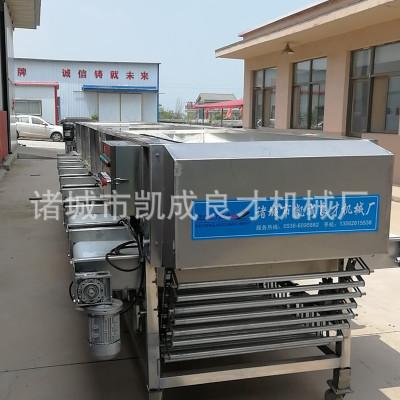 风力吹选机大型春毛豆加工设备比重风选设备农作物玉米去杂风选机