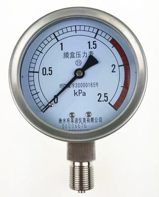 膜盒压力表YE100 精度2.5级 微压表气压压力表 标准螺纹M20*1.5