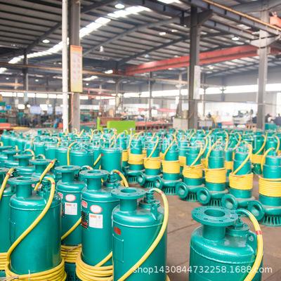 市政工程油田防爆潜污泵一流的团队服务