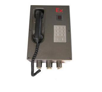 HZWB-1(2)型无主机(智能)扩音防爆电话站(隔爆兼本安型IIC级)