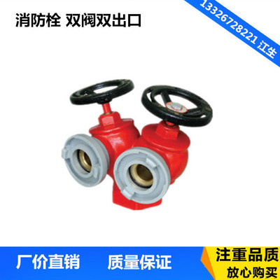 消防栓 双阀双出口减压稳压室内消火栓消防器材SNSS80/65