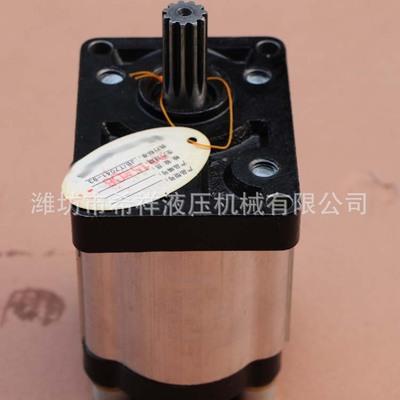 CBT-F325液压齿轮泵 高压齿轮油泵 润滑油液压油泵厂家定制
