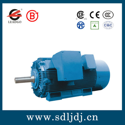 Y2、YX2系列高压高效三相异步电动机 三相异步电动机