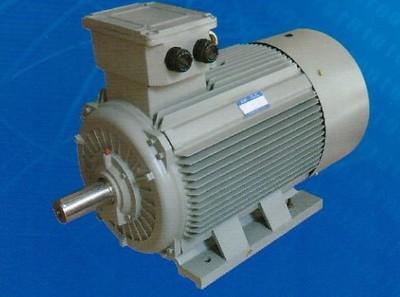 电机厂 Y2 355-2 高压异步电动机