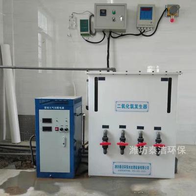 电解二氧化氯发生器 100g200g二氧化氯发生器 电解法二氧化氯
