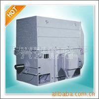 YTM专用高压电机 三相异步电动机 西玛电机厂