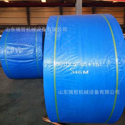 专业生产挡边环形橡胶输送带 尼龙强力耐腐蚀挡边传输带