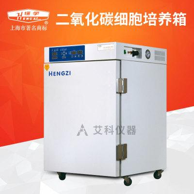 上海跃进二氧化碳细胞培养箱水套式气套式CO2培养箱WJ-2/WJ-2-160