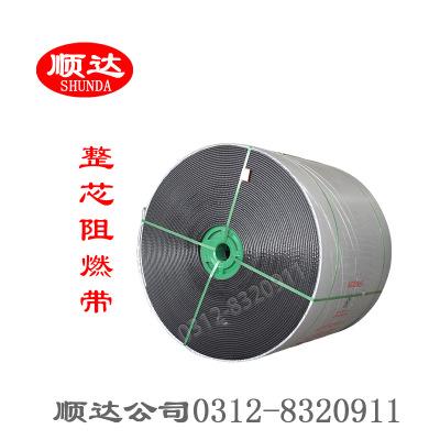 煤矿专用整芯阻燃PVC PVG耐高温导静电pvc pvg高耐磨输送带传动带