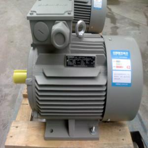 广州西门子低压交流异步电动机1LE0001系列11kw-2极节能高能效