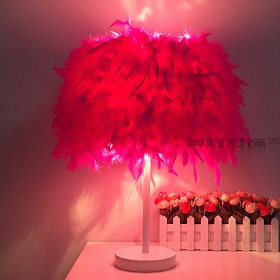 欧式时尚羽毛婚庆灯具结落地装饰台灯见详情简约现代客厅小灯饰