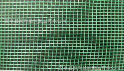 厂家供应窗纱网 防虫网 塑料编织网 塑料网 尼龙网