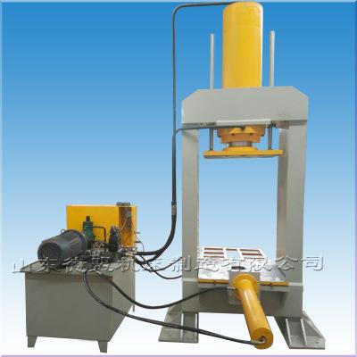 源头工厂 定制100吨200吨315吨龙门液压机 非标双速度薄板拉伸机