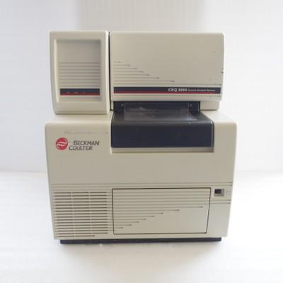 Beckman/贝克曼CEQ8000 DNA测序仪