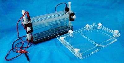 北京六一DYCZ-20G高通量DNA测序电泳仪