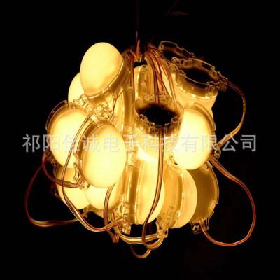 D30 D50 D80 LED 3灯5灯7灯透明壳点光源DC24V IP68