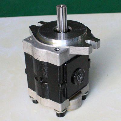 厂家直销 质优价廉 电动叉车齿轮泵 蠕墨铸铁泵体齿轮泵